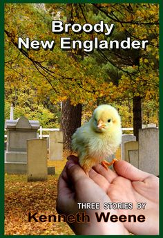 Cover of my book. Three stories set in Maine. Literary fiction with a good helping of speculative.