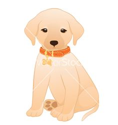 golden+labador+cartoon+images | Labrador retriever puppy vector