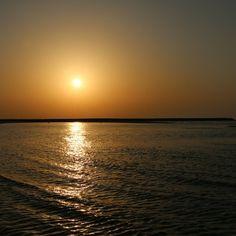 Morning Desert Safari – Stay Near to Nature #dubai