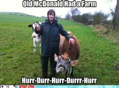 hurr durr derp face - And on That Farm He Had Some Derp