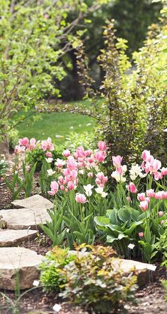 Gardening Flowers - Early spring flowers are the surest sign that warmer weather is coming. Our list of early spring flowers will give you ideas for the best flowers to plant in spring. After a long winter, it's time for spring landscaping! Early Spring Flowers, Blooming Flowers, Flowers Perennials, Planting Flowers, Flowers Garden, Garden Borders, Plantation, Spring Garden, Dream Garden