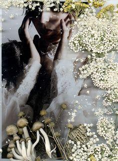 photo collage--katy shayne