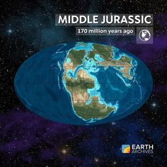 During the Middle Jurassic seen here 170 million years ago Pangaea was rifting into two continents and the Atlantic Ocean began to form. In the water groups of large ocean-going reptiles called the ichthyosaurs pliosaurs and plesiosaurs were common and dominant. On land large dinosaurs like the brachiosaurs began to diversify and conifers blanketed much of the ground. #science #geology #paleontology #fossils #continentaldrift #tectonic #earth #jurassic