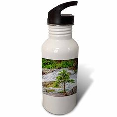3dRose Boehm Photography Landscape - Small Pine on Virginia Creek - Flip Straw 21oz Water Bottle (wb_244347_2) * You can find more details by visiting the image link.