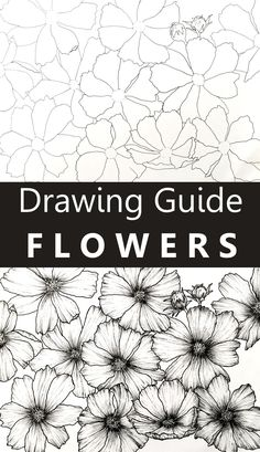 A step-by-step guide for drawing beautiful flower art with pen and ink. Tutorial for beginners for drawing flowers in a easy way using reference images. art How to Draw ANY Flower You Like Flower Art Drawing, Flower Drawing Tutorials, Drawing Tutorials For Beginners, Floral Drawing, Flower Artwork, Art Tutorials, Painting & Drawing, Beginner Drawing Tutorial, Flower Drawing Tutorial Step By Step