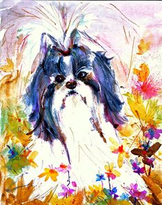 Shih Tzu- Shit Zu - Shizu - Watrcolor Fine Art dog Print SIGNED by the Artist Carol Ratafia DOUBLE MATTED to16x20