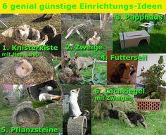 einrichtung-günstig-kaninchen                                                                                                                                                                                 Mehr
