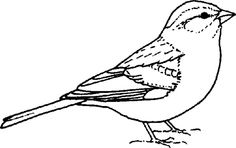 sparrow black trees black sparrow pencil and in color black sparrow sparrow black trees black sparrow pencil and in color black sparrow inside sparrow black and sparrow outline images sparrow outline Bird Line Drawing, Bird Drawings, Sparrow Drawing, Animal Outline, Outline Images, Bird Clipart, Free Clipart Images, Silhouette Clip Art, Bird Embroidery