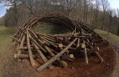 The Clemson Clay Nest was a public land art installation by Bavarian artist Nils-Udo that was constructed in the botanical gardens at Clemson University in South Carolina in 2005