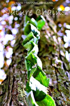 Nature crafts at their best! These simple and pretty nature chains are a lovely way of creating with nature. And great for decorating a summer Christmas tree too! www.HowWeeLearn.com