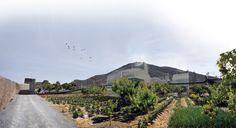 Centro de Sinergias Agroalimentarias de San Ginés de la Jara | PFC  Antonio Zamora Guillén