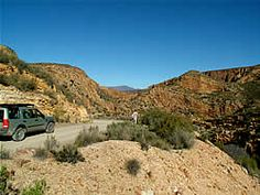 """The Baviaanskloof, once South Africa's best kept secret, is steadily becoming better known as one of South Africa's """"must"""" places to visit.  This wonderland is an ever changing selection of scenery and vegetation types ranging from fynbos to lush riverine forest.  It is also populated by a wide selection of animals from the seldom seen leopards and buffalos, through various antelope species to the ever present baboons and tortoises. Heavenly Places, Wildlife Safari, Port Elizabeth, Baboon, I Want To Travel, Tortoises, Travel Info, Leopards, Diversity"""