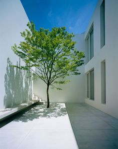 Tetsuka House in Tokyo by John Pawson. In tinted pre-cast concrete.