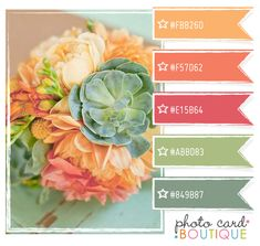 Looking for just the right color palette for your living room...your nursery...your wedding...or even your Christmas tree?  Then check out this wonderful site jam packed with color palette suggestions!!