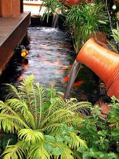 Koi pond around a nice big gazebo to just hang out and for Koi pond next to pool