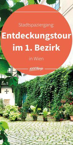 Vienna, Austria, City, World, Plants, Traveling, Wanderlust, Drink, Beautiful