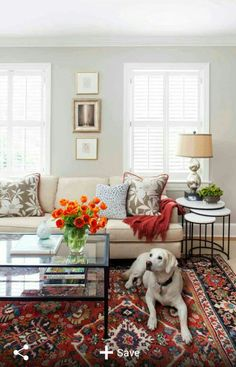 Revere Pewter by Benjamin Moore as a classic warm grey backdrop, neutral sofa, silver and brass accents with a Persian rug and flowery but neutral pillows and orange flowers to add a pop of pattern, eclecticism send colour. Nice!
