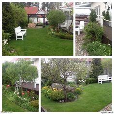 penkki,puutarha,piha,terassi