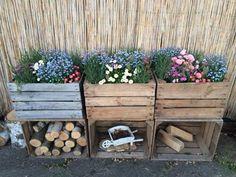 Garden Decoration with Crates - Like Plants . - Garden Care, Garden Design and Gardening Supplies Garden Care, Apple Crates, Fruit Crates, Apple Boxes, Balcony Garden, Herb Garden, Diy Garden Decor, Balcony Decoration, Garden Decorations