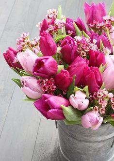 Tulpen dürfen für die Frühlingsstimmung natürlich nicht fehlen. :-)