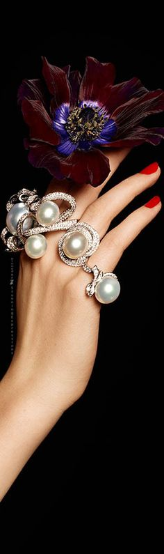 Pearls are among the most beautiful and timeless gems, and they can mean so much when given or received as a gift. Pearl rings, in particular, can be a wonderful way to make a unique and stunning f… Pearl Ring, Pearl Jewelry, Crystal Jewelry, Jewelry Box, Fashion Rings, Fashion Jewelry, Pearl And Lace, Felt Hearts, Shades Of Red
