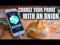 It's sort of like a potato battery but it's much stronger. We'll show you How to extract the energy from the inside of an onion and make it charge your iphon. Off Grid Survival, How To Make Fire, Computer Internet, Tech Hacks, Phone Hacks, Pinterest Projects, Apple Products, Science Projects, Onion