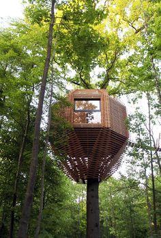 Casa Na Árvore: 60 Projetos Sensacionais Com Fotos P/ Você Se Inspirar Treehouses, Awesome, Outdoor Decor, Furniture, Home Decor, Wooden Tree, Garden, Cake, Log Projects