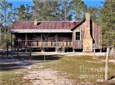 pictures of old florida cracker houses - Yahoo Search Results I Love House, House In The Woods, My House, Old Florida, Florida Home, Florida Living, Old Cabins, Cabins And Cottages, Lofts