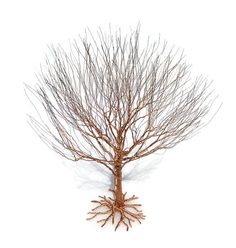 In Bonsai this style is called Besom - translated to English that means Broom - so named because it looks a bit like an up-ended broom.  It is