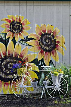 Sunflowers And Bicycle Photograph by Kenny Francis - Sunflowers And Bicycle Fine Art Prints and Posters for Sale