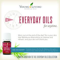 Melaleuca (Tee Tree) Oil to refresh your skin