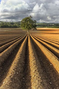 """˚The Perfect Plough - Wexford Ireland What is nicer than watching a field ploughed by an """"artist"""" Country Farm, Country Life, Country Living, Wexford Ireland, Landscape Photography, Nature Photography, Illustration Botanique, Farm Life, Belle Photo"""