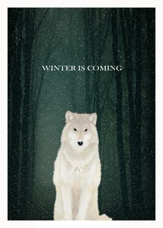 Poster | WINTER IS COMING von Rubbishmonkey | more posters at http://moreposter.de