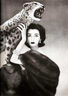 Animal Magnetism  Harper's Bazaar, December 1950  Photographer: Richard Avedon  Model: Dovima