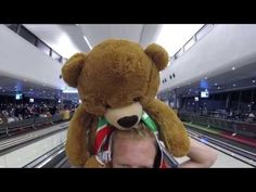 Day 1 Travel Teddy - flying to Edmonton - YouTube