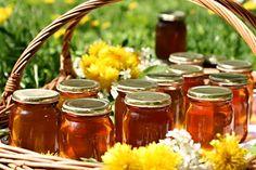 Recept na Pampeliškový med III. Belgian Cuisine, Fruit Stands, Mother Earth News, Natural Honey, Food Court, Bee Keeping, Moscow Mule Mugs, Berries, Stuffed Mushrooms