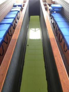 Glass Bottom Boat - Aquarena Springs - San Marcos, TX