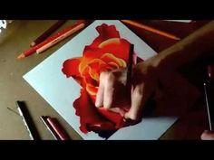 "Prismacolor Premier Colored Pencil ""Rose"" by artist Heather Rooney"