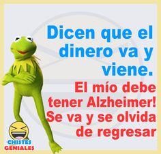 Funny Spanish Jokes, Spanish Memes, Spanish Quotes, Funny Animal Pictures, Funny Images, Funny Animals, Animals Tumblr, Wtf Funny, Funny Jokes