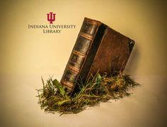 Indiana+University