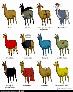 Here's a llama, there's a llama, and another little llama. Fuzzy llama, funny llama, llama llama duck.