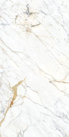 Elemental Selection - Panoramic Porcelain Surfaces