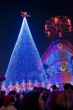 Disney Studios Photograph - Disney Christmas Lights Spectacle by Charles Ridgway Disney World Christmas, Blue Christmas, Christmas Music, Outdoor Christmas, Beautiful Christmas, Christmas Holidays, Celebrating Christmas, Christmas Scenes, Christmas 2019