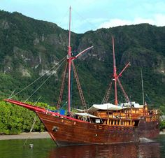 Diving in Raja Ampat, Indonesia — Passports and Champagne