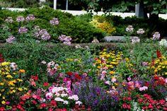 23 Amazing Flower Garden Ideas   Amazing Online Magazine