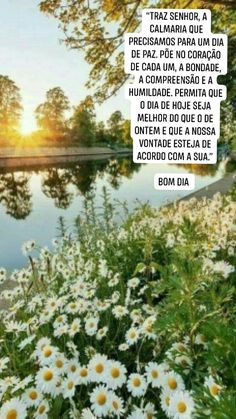 1, Quotes, Humility, Frases, Good Afternoon, Nighty Night, Bom Dia, Messages, Joy