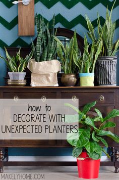 Add some character to your house plants by using unexpected items as planters instead of plant pots. Ikebana, Potted Plants, Indoor Plants, Plant Pots, Shabby, Container Gardening, Indoor Gardening, Eclectic Decor, Houseplants