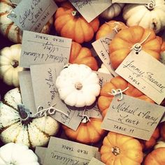Check out the best ways to add pumpkin to your fall wedding day, like this autumn-inspired pumpkin favors! wedding favors 10 Ways To Pumpkin-ify Your Fall Wedding Wedding Favors For Guests, Wedding Ideas, Trendy Wedding, Wedding Planning, Elegant Wedding, Wedding Stuff, Wedding Themes, Halloween Wedding Favors, Diy Wedding