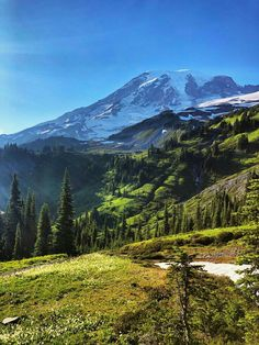 Incredible views and weather this weekend at Rainier. Skyline Trail, Mount Rainier National Park, WA, US [OC] – Photo Snapping Beautiful Places To Visit, Wonderful Places, Beautiful World, Nature Sauvage, Mount Rainier National Park, Design Graphique, Mountain Landscape, Beautiful Landscapes, Beautiful Scenery