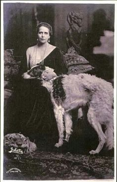 z- Borzoi w Queen Marie of Romania (nee- Princess Marie of Edinburgh) Photos With Dog, Dog Pictures, Russian Wolfhound, Greyhound Art, Vintage Dog, Kaiser, Beautiful Dogs, Dog Art, Dog Love
